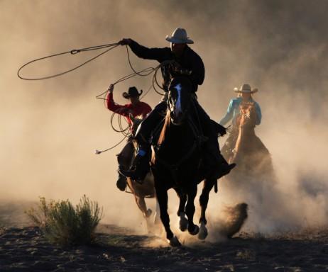 rodeo roundup cowboy lasso